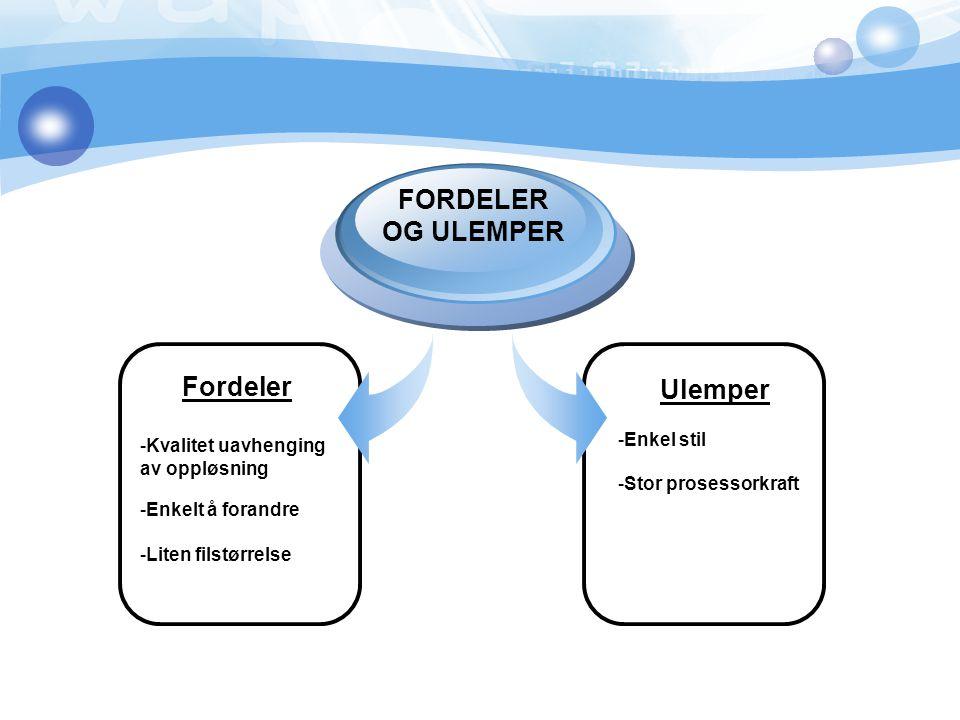 FORDELER OG ULEMPER Fordeler