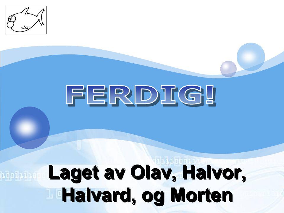 Laget av Olav, Halvor, Halvard, og Morten
