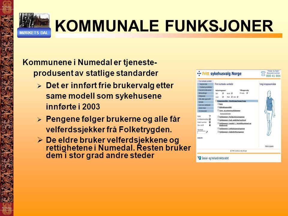 KOMMUNALE FUNKSJONER MØRKETS DAL. Kommunene i Numedal er tjeneste-produsent av statlige standarder.