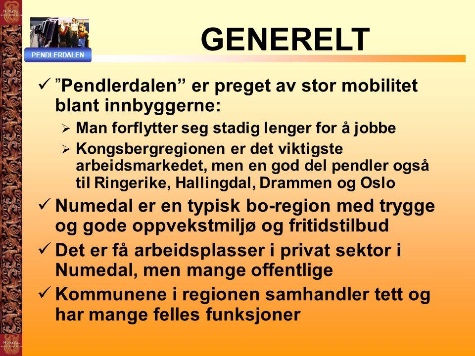 GENERELT Pendlerdalen er preget av stor mobilitet blant innbyggerne: