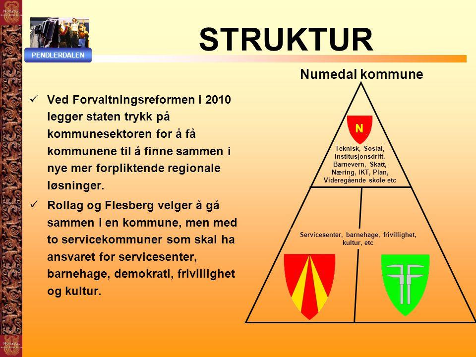 Servicesenter, barnehage, frivillighet, kultur, etc