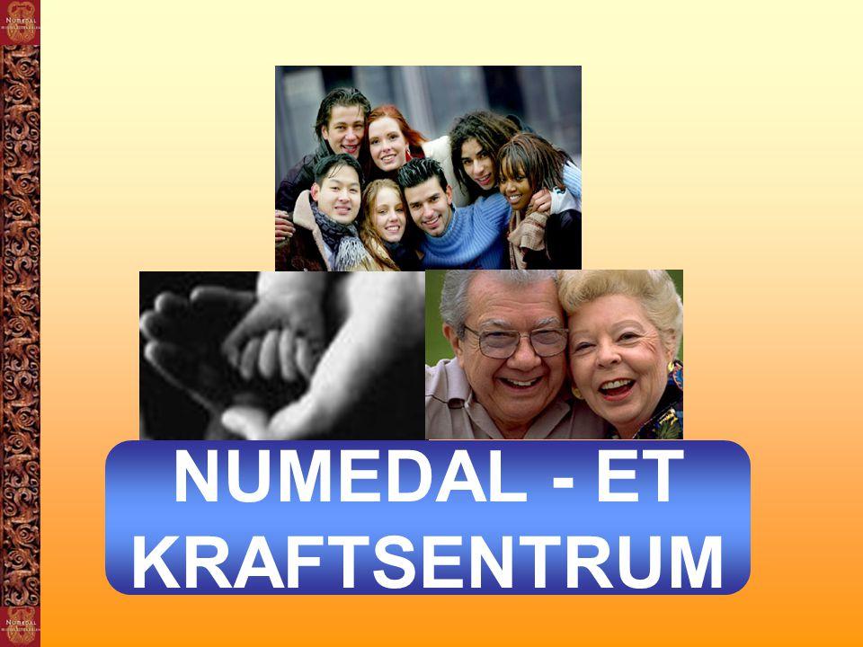 NUMEDAL - ET KRAFTSENTRUM
