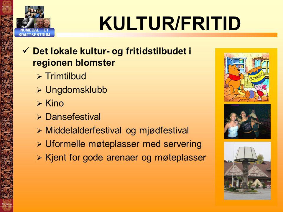 NUMEDAL - ET KRAFTSENTRUM. KULTUR/FRITID. Det lokale kultur- og fritidstilbudet i regionen blomster.