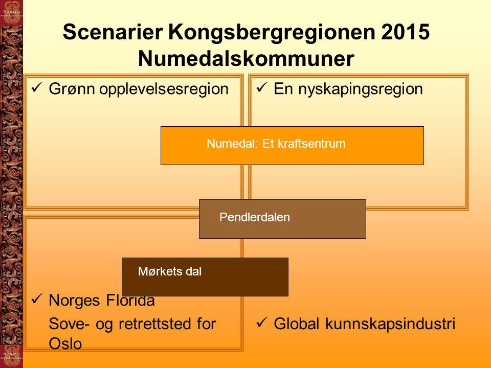 Scenarier Kongsbergregionen 2015 Numedalskommuner