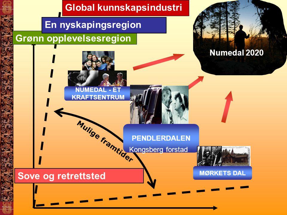 Global kunnskapsindustri