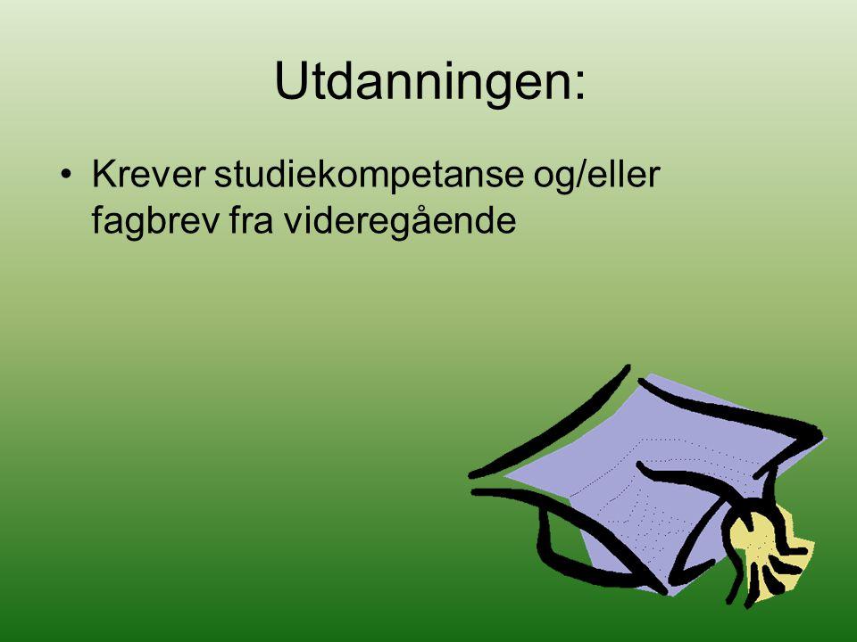 Utdanningen: Krever studiekompetanse og/eller fagbrev fra videregående