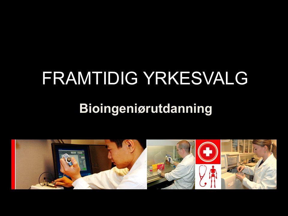Bioingeniørutdanning