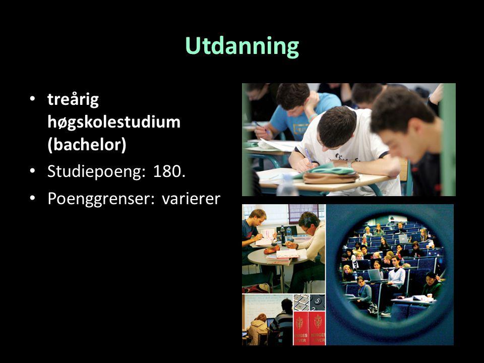 Utdanning treårig høgskolestudium (bachelor) Studiepoeng: 180.