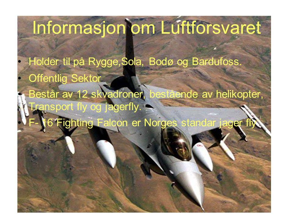 Informasjon om Luftforsvaret