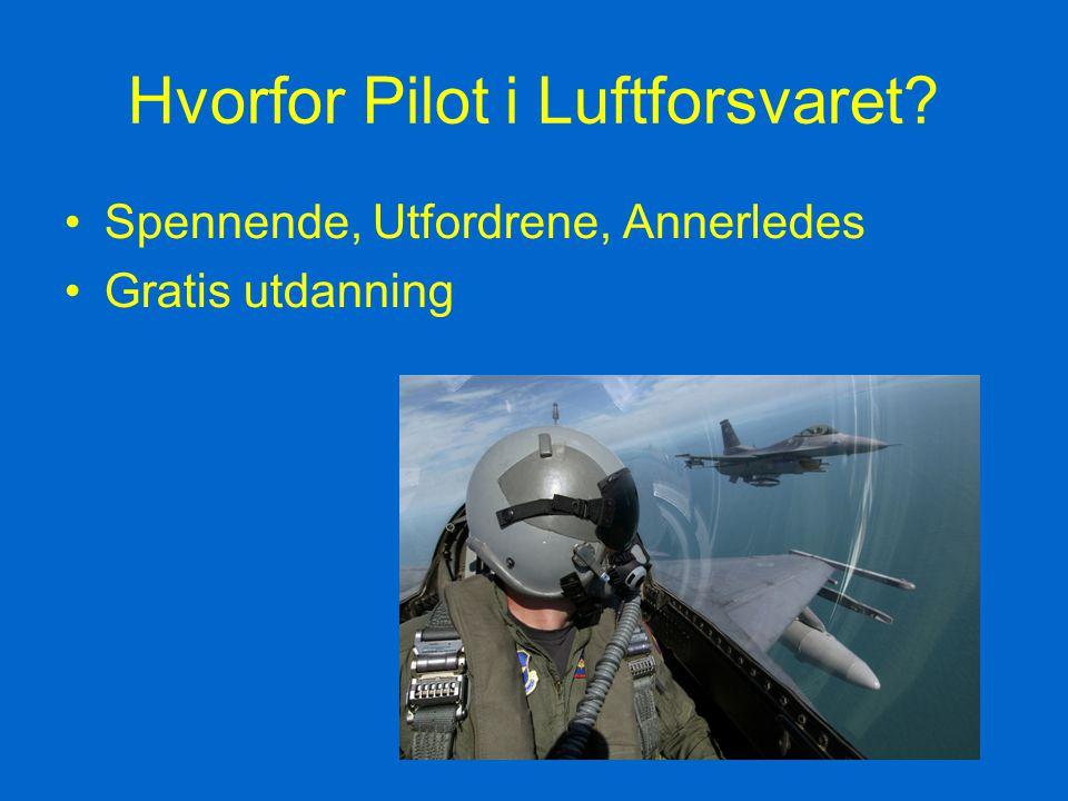 Hvorfor Pilot i Luftforsvaret