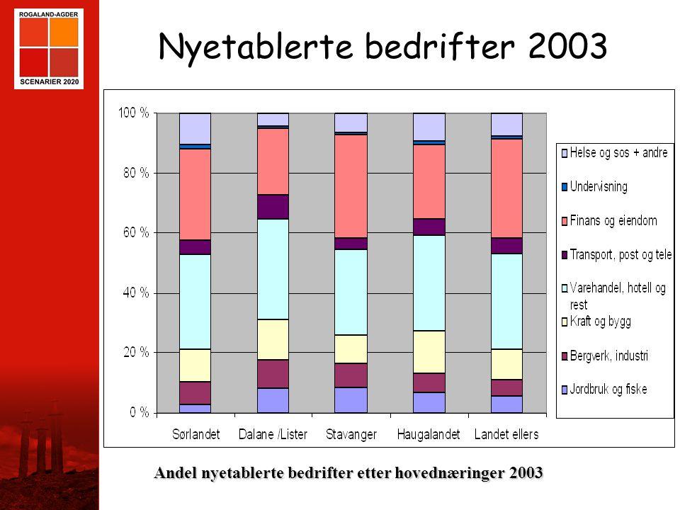 Nyetablerte bedrifter 2003