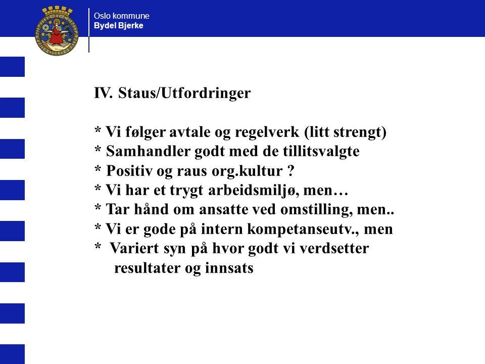 IV. Staus/Utfordringer