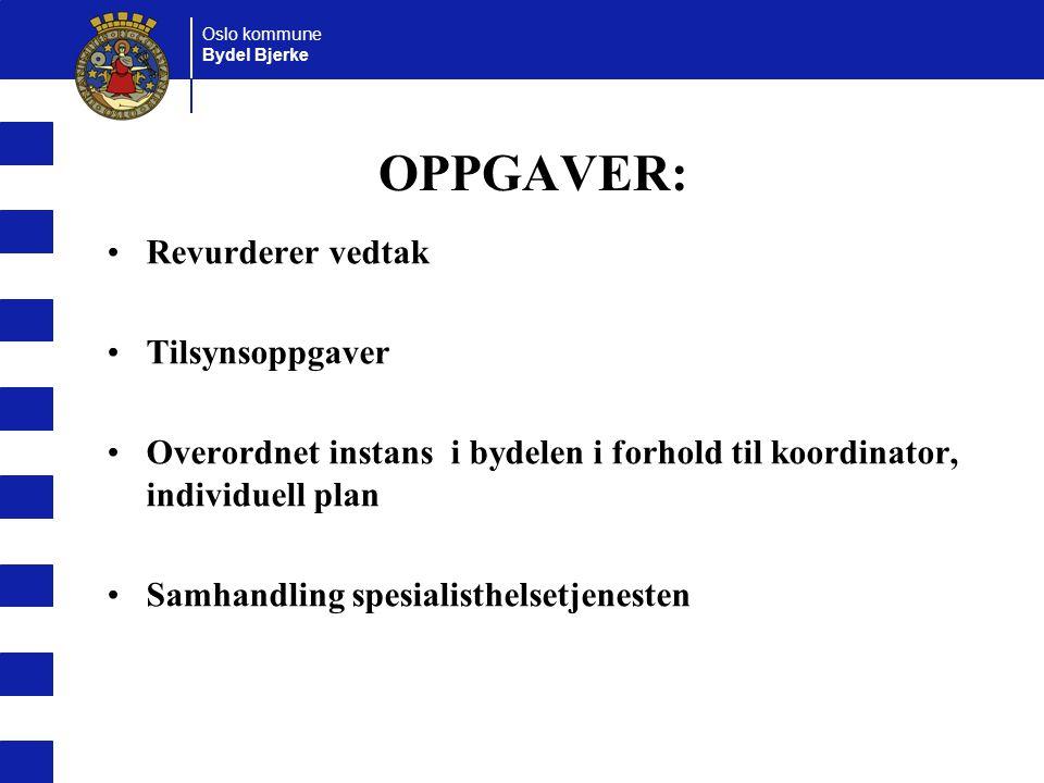 OPPGAVER: Revurderer vedtak Tilsynsoppgaver