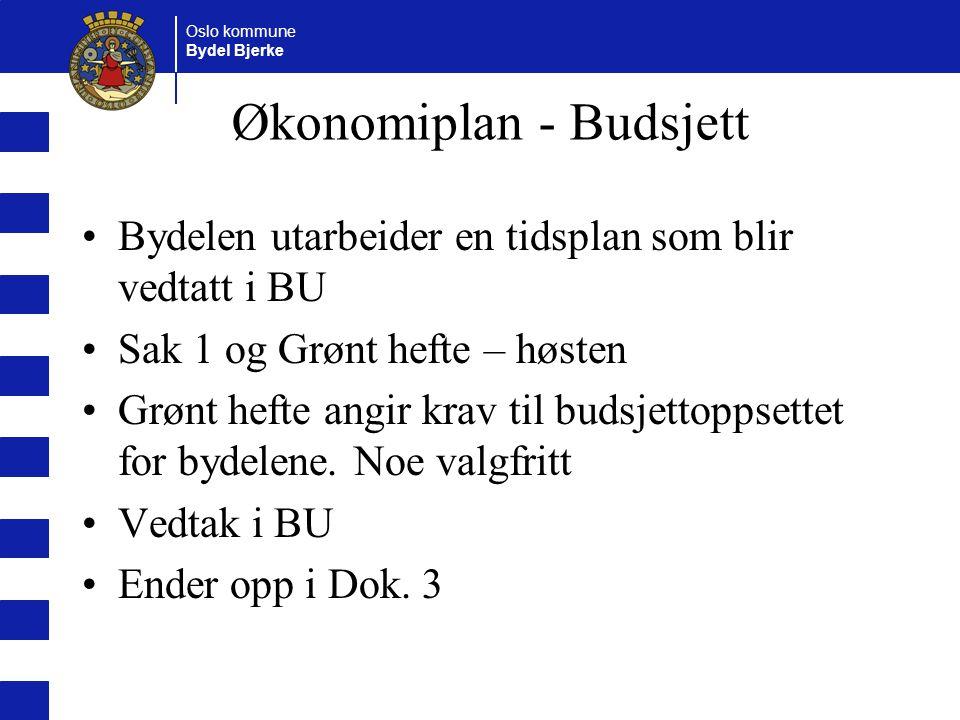 Økonomiplan - Budsjett