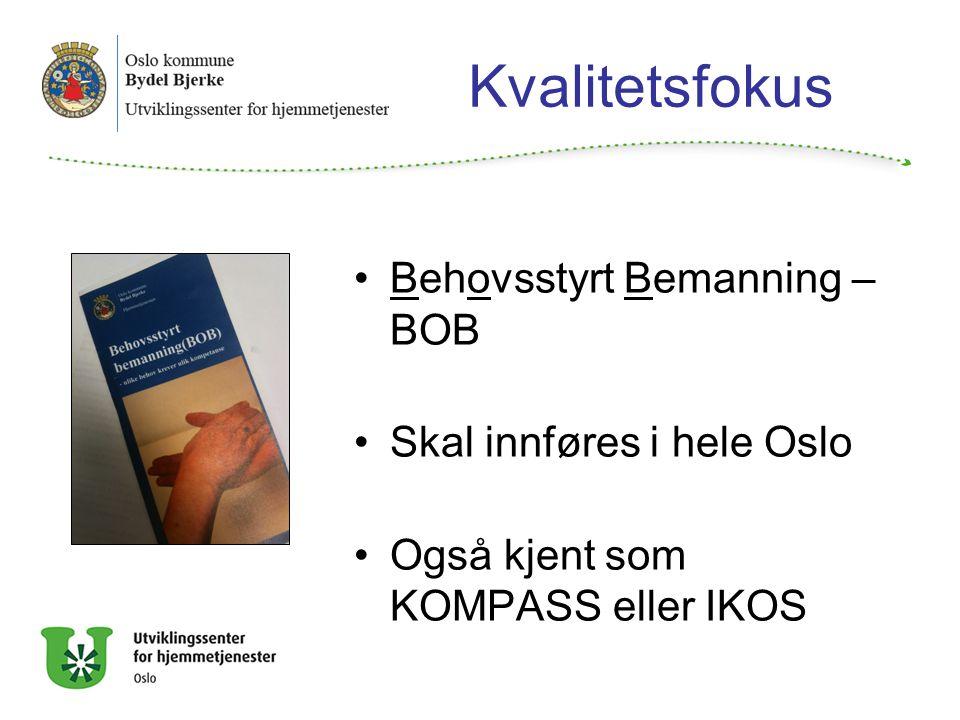 Kvalitetsfokus Behovsstyrt Bemanning – BOB Skal innføres i hele Oslo
