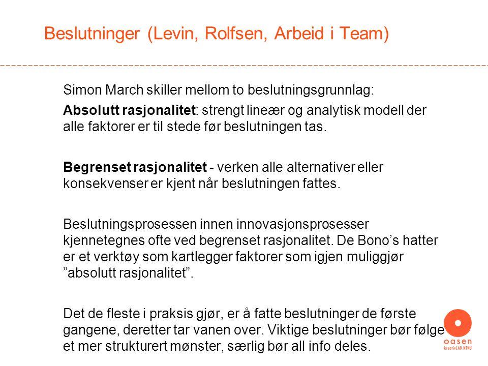Beslutninger (Levin, Rolfsen, Arbeid i Team)