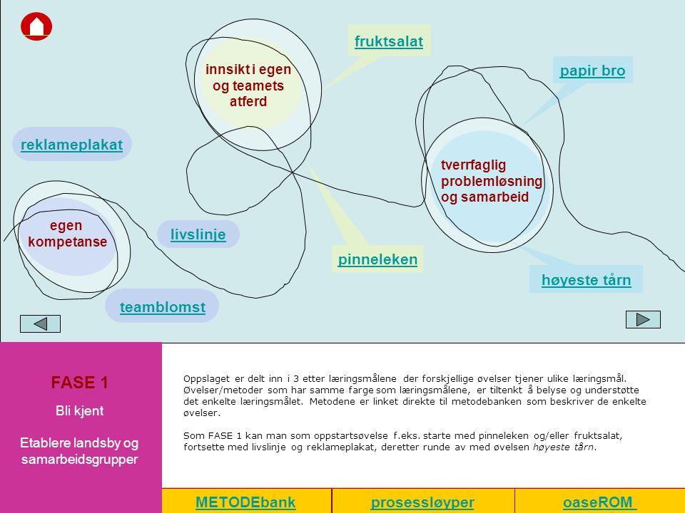 Etablere landsby og samarbeidsgrupper