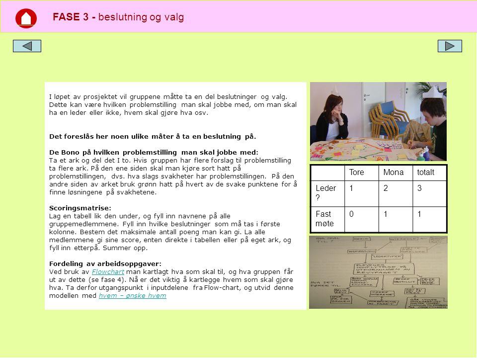 FASE 3 - beslutning og valg