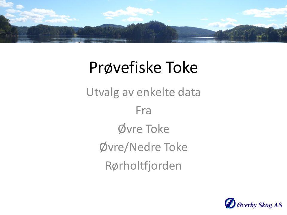 Utvalg av enkelte data Fra Øvre Toke Øvre/Nedre Toke Rørholtfjorden