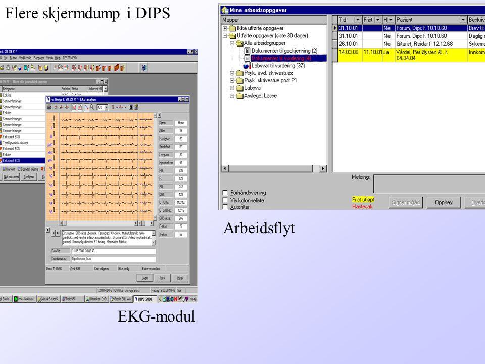 Flere skjermdump i DIPS