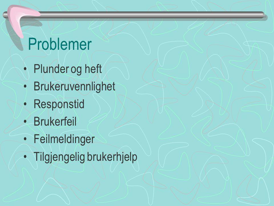Problemer Plunder og heft Brukeruvennlighet Responstid Brukerfeil