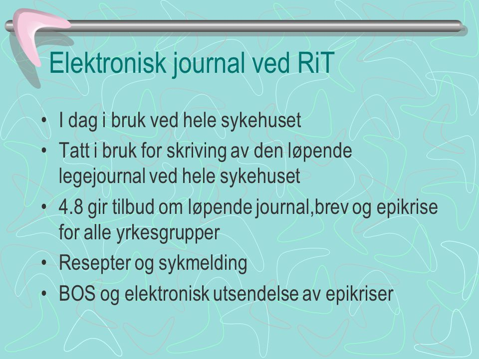 Elektronisk journal ved RiT