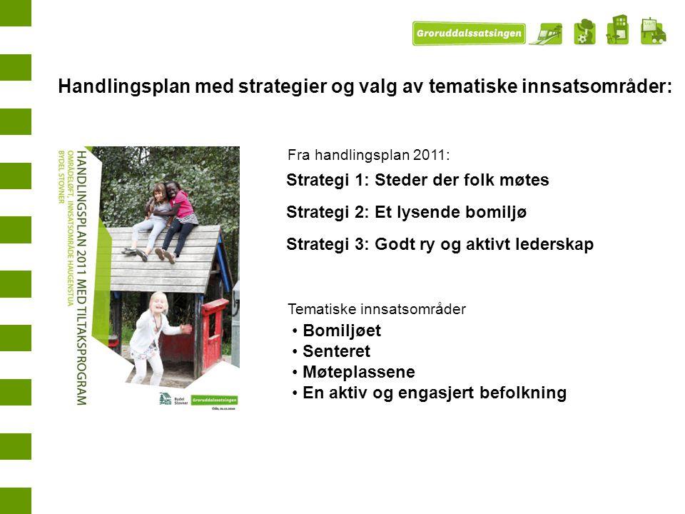 Handlingsplan med strategier og valg av tematiske innsatsområder: