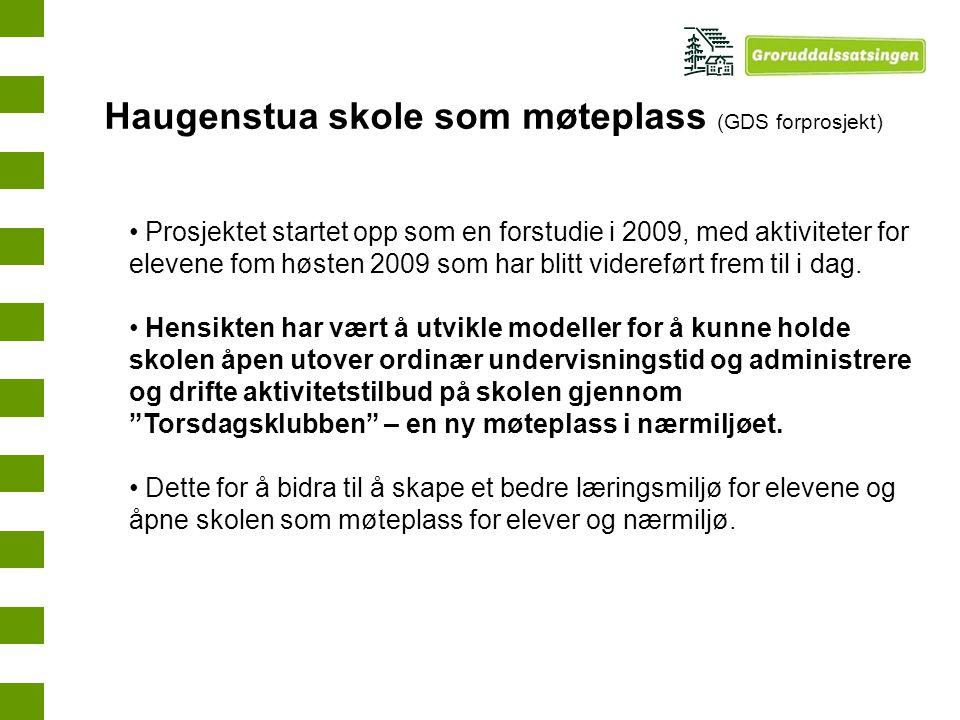 Haugenstua skole som møteplass (GDS forprosjekt)