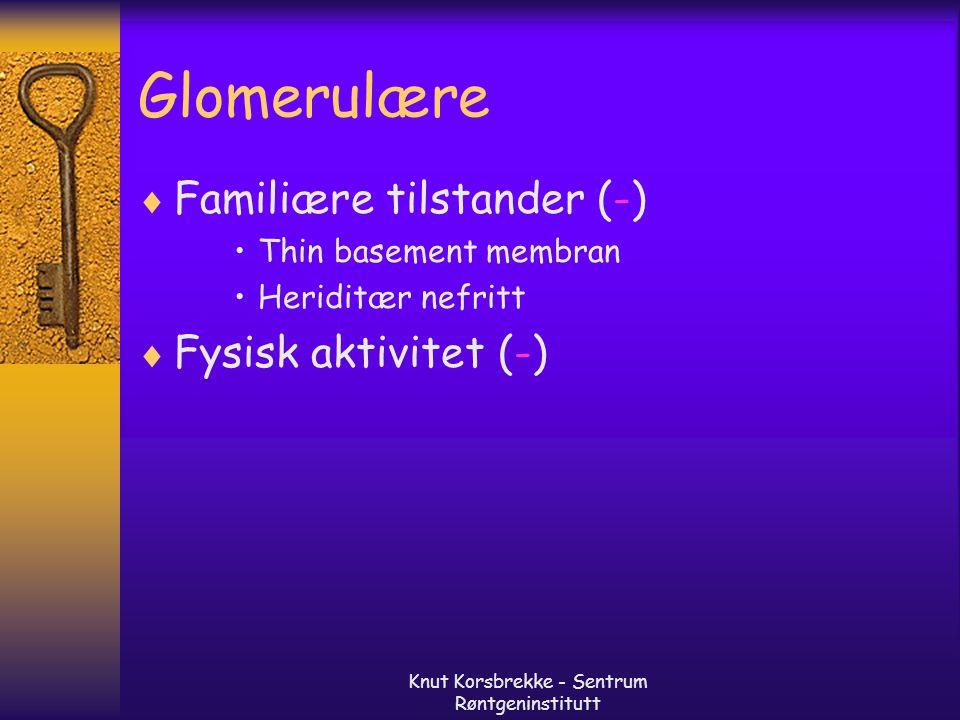 Knut Korsbrekke - Sentrum Røntgeninstitutt