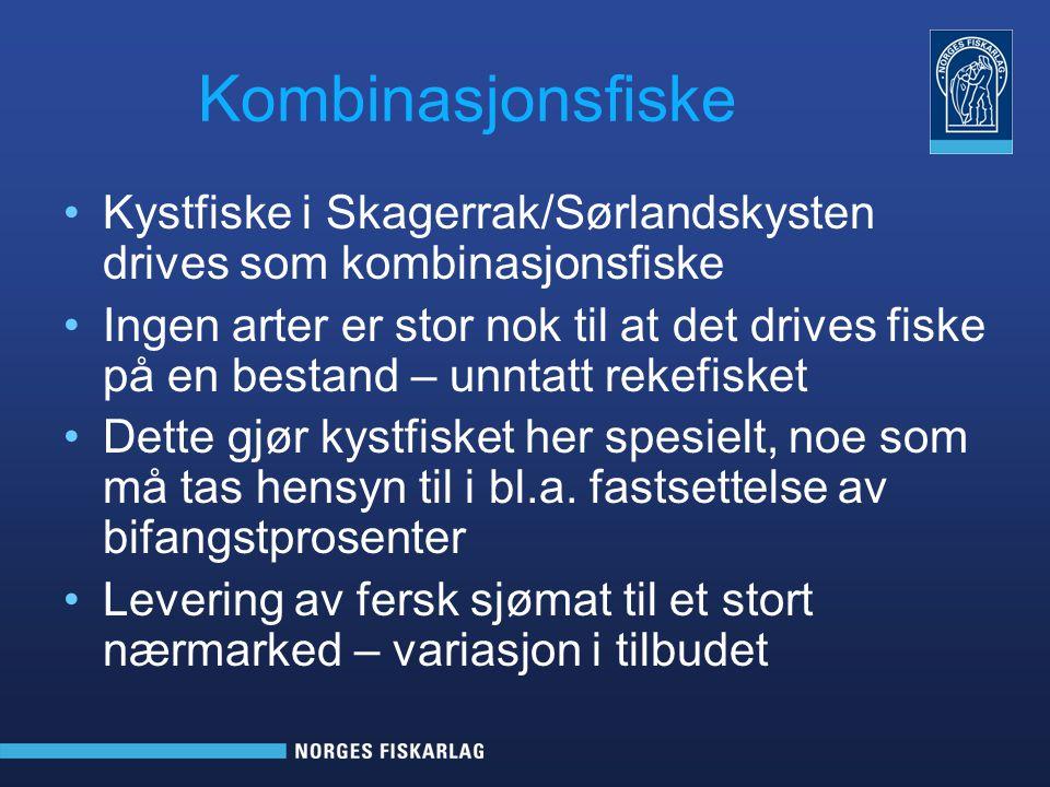 Kombinasjonsfiske Kystfiske i Skagerrak/Sørlandskysten drives som kombinasjonsfiske.