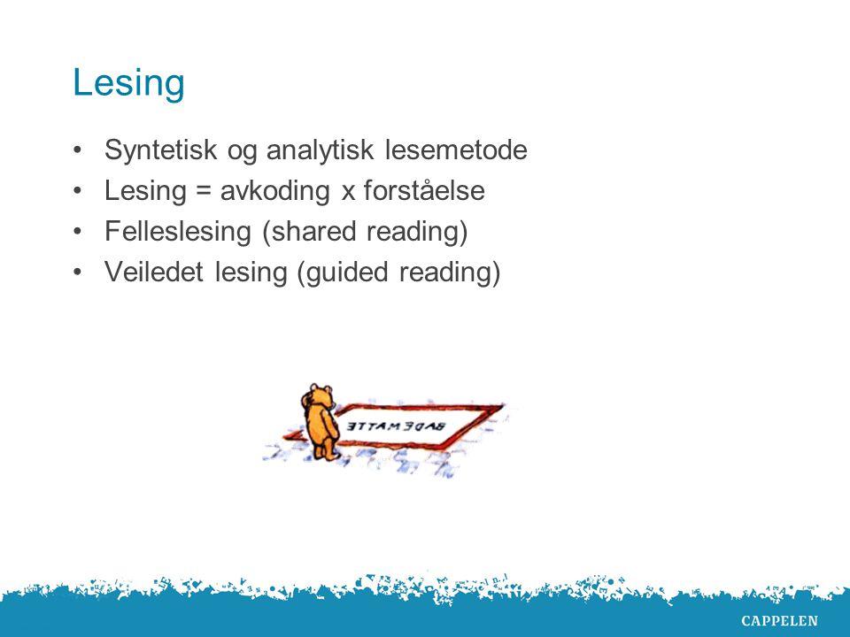 Lesing Syntetisk og analytisk lesemetode