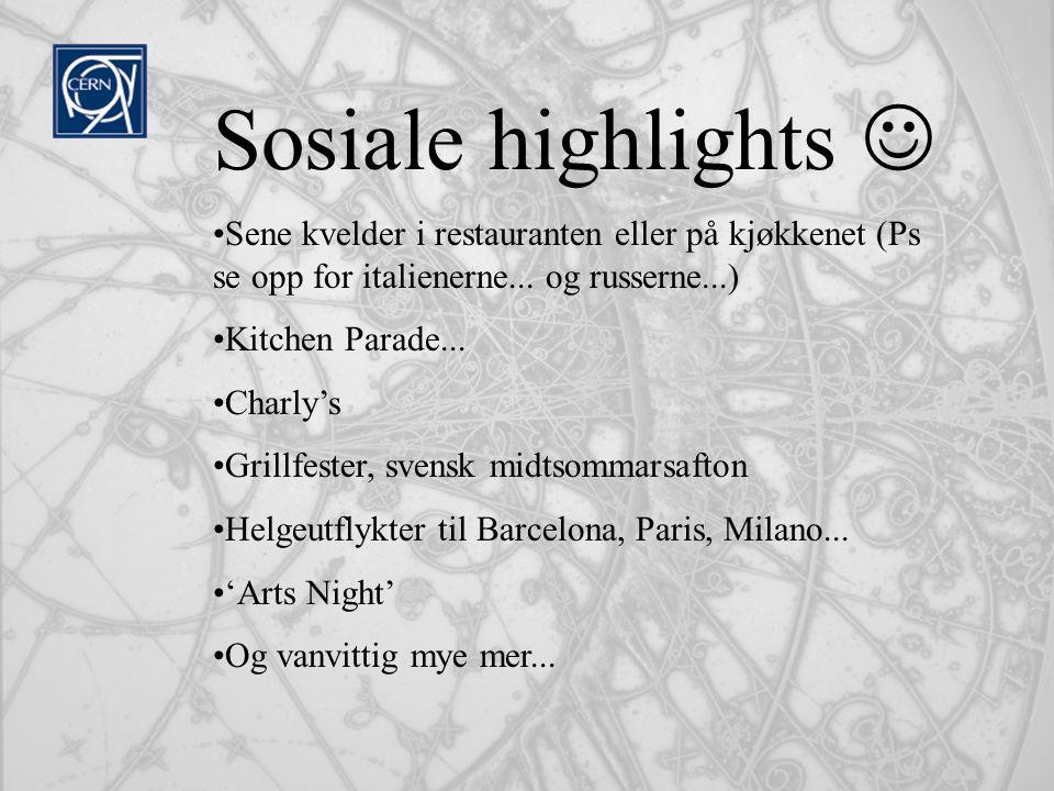 Sosiale highlights  Sene kvelder i restauranten eller på kjøkkenet (Ps se opp for italienerne... og russerne...)
