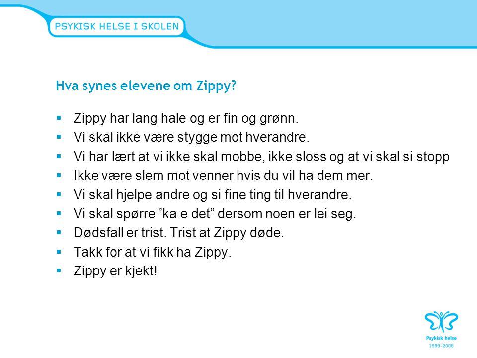 Hva synes elevene om Zippy
