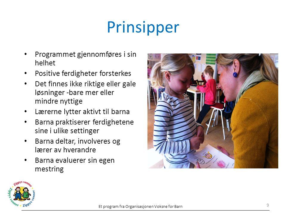 Prinsipper Programmet gjennomføres i sin helhet
