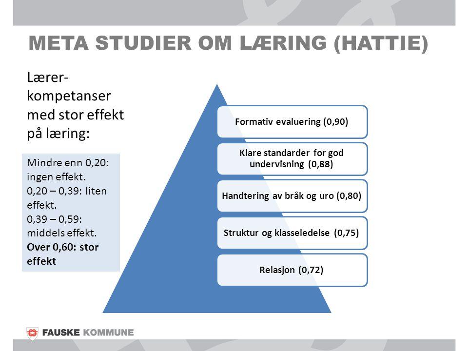 Meta studier om læring (hattie)