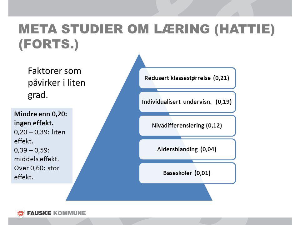 Meta studier om læring (hattie) (forts.)