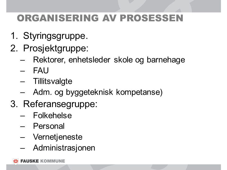 Organisering av prosessen