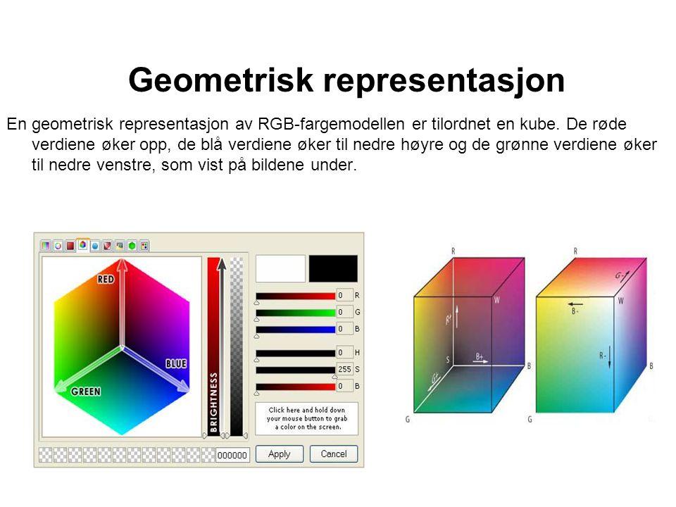 Geometrisk representasjon