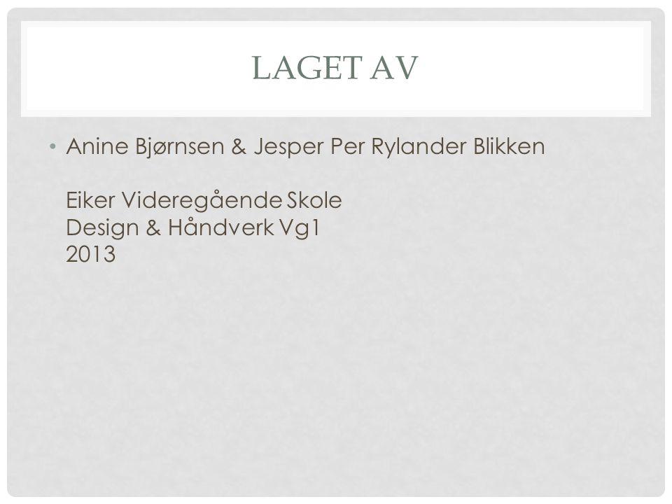 Laget av Anine Bjørnsen & Jesper Per Rylander Blikken Eiker Videregående Skole Design & Håndverk Vg1 2013.
