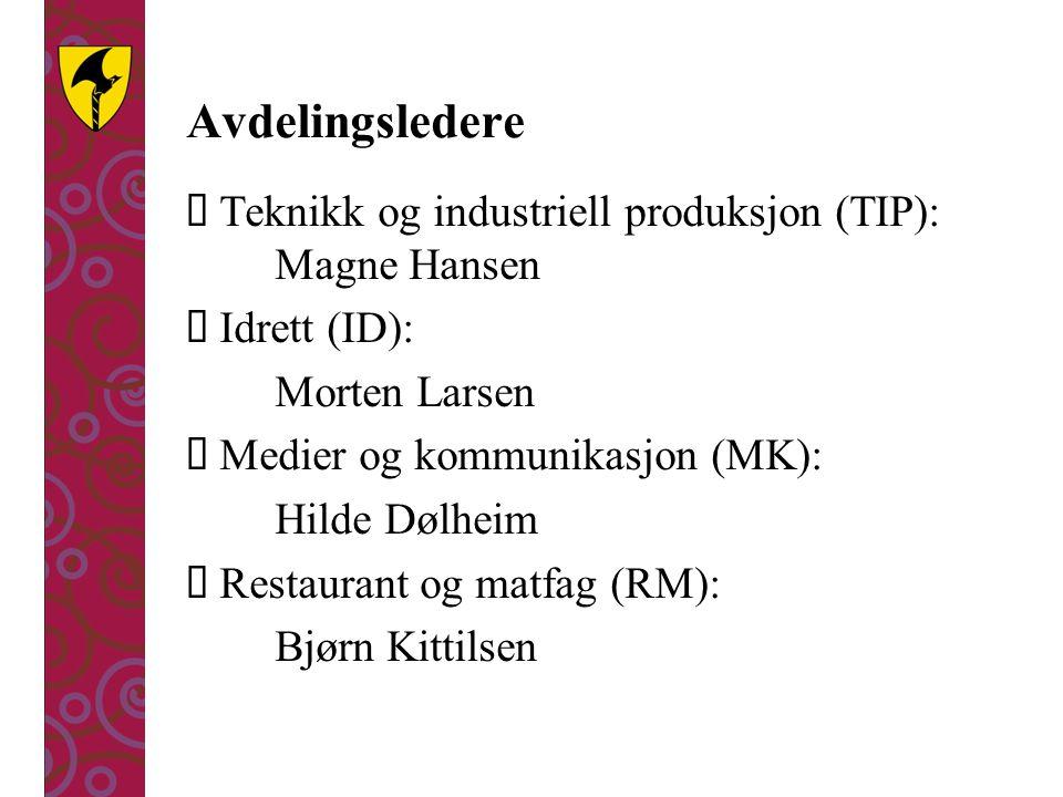 Avdelingsledere Teknikk og industriell produksjon (TIP): Magne Hansen