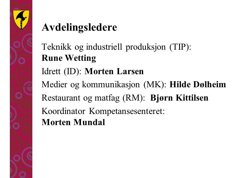 Avdelingsledere Teknikk og industriell produksjon (TIP): Rune Wetting