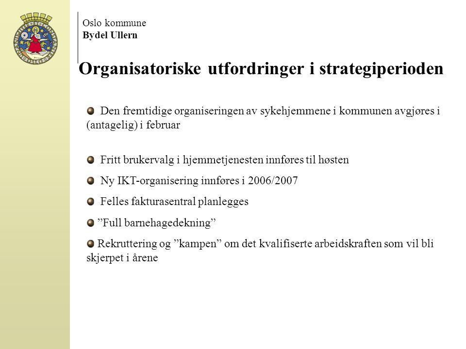 Organisatoriske utfordringer i strategiperioden