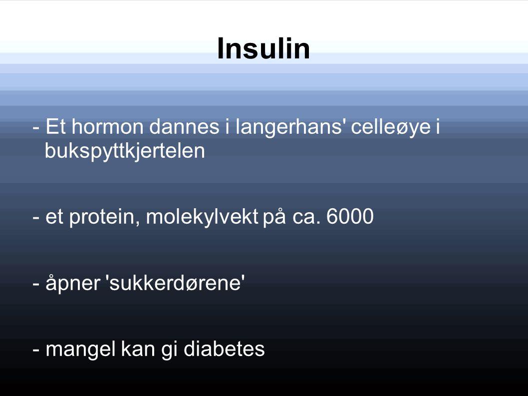 Insulin - Et hormon dannes i langerhans celleøye i bukspyttkjertelen