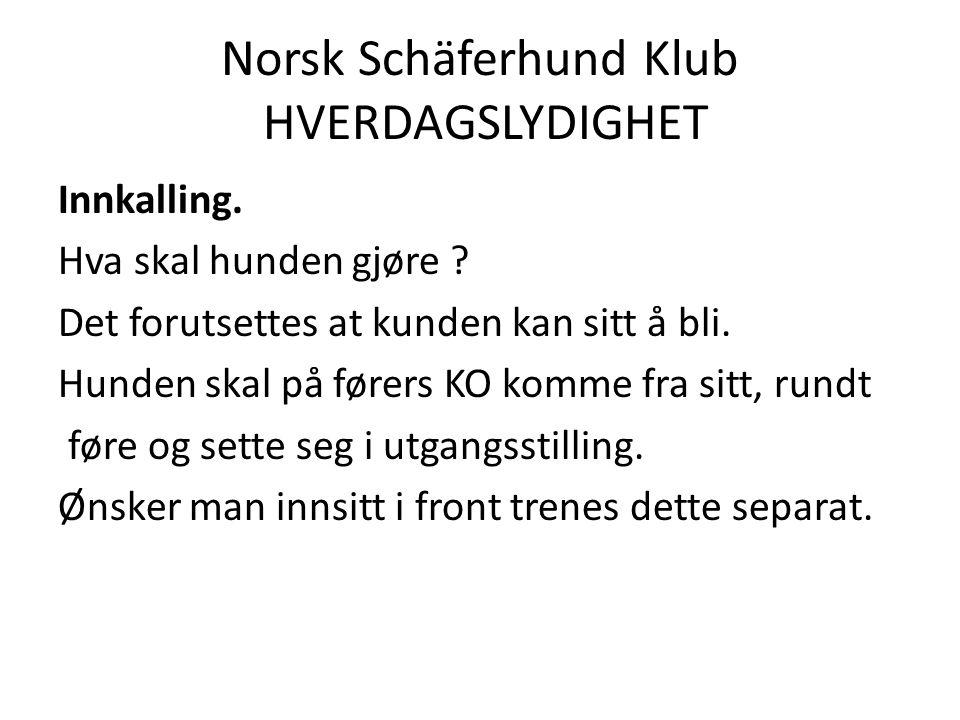 Norsk Schäferhund Klub HVERDAGSLYDIGHET