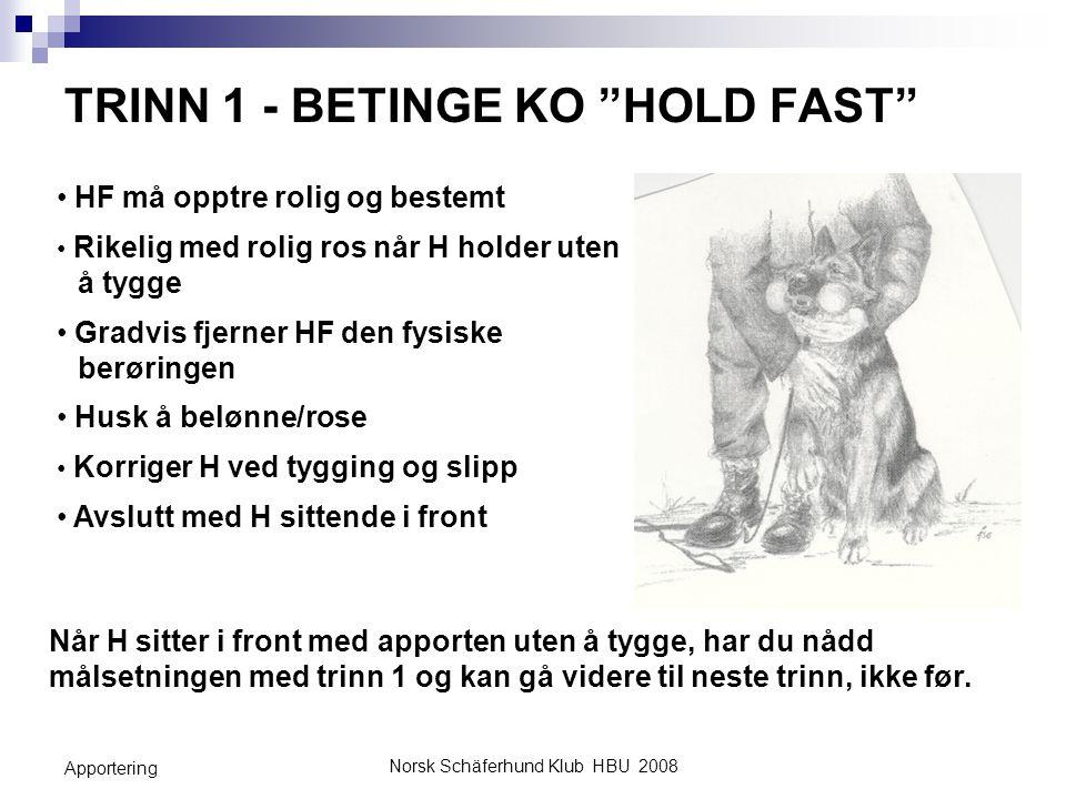 TRINN 1 - BETINGE KO HOLD FAST