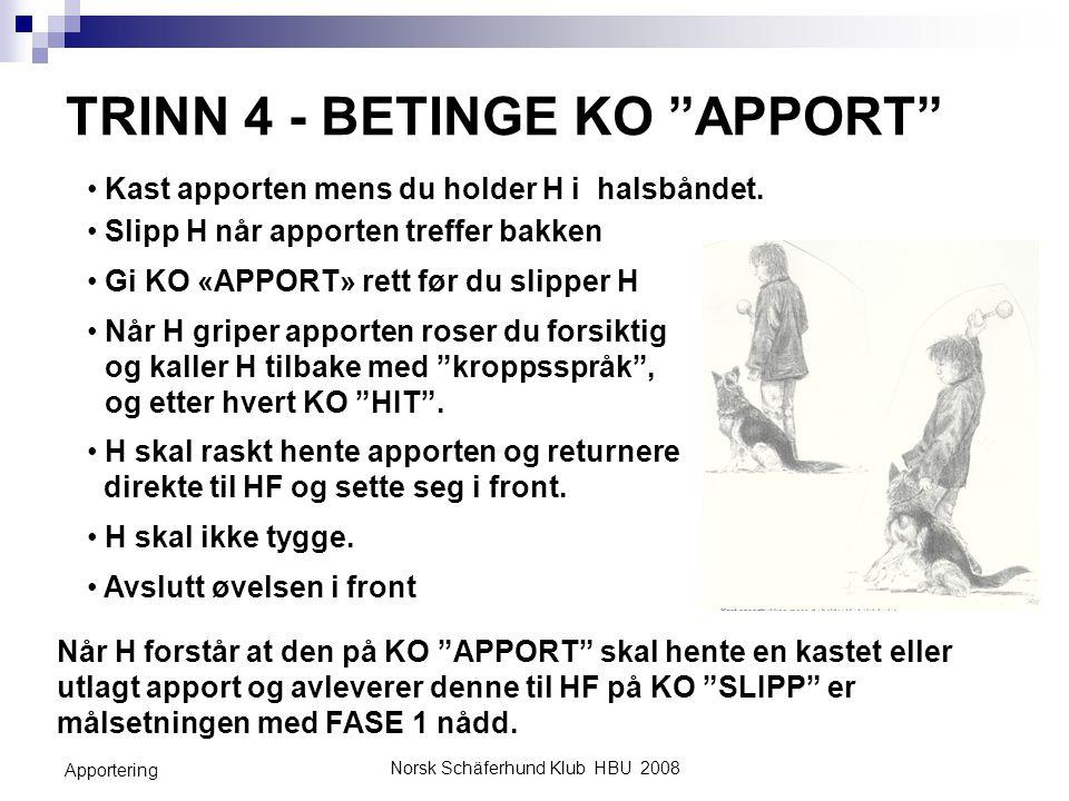TRINN 4 - BETINGE KO APPORT