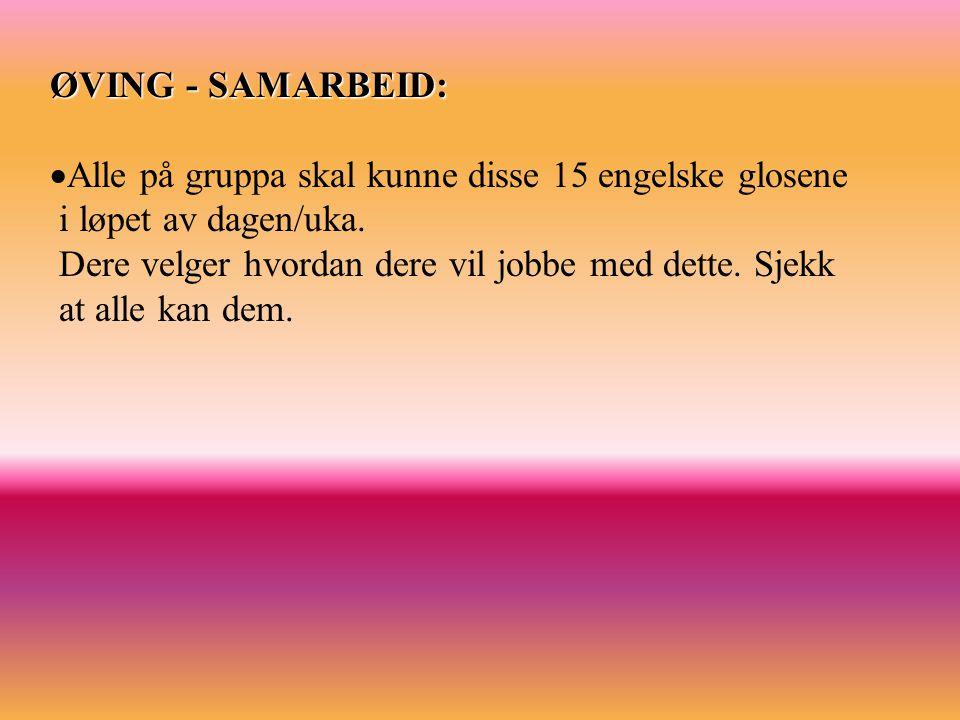 ØVING - SAMARBEID: