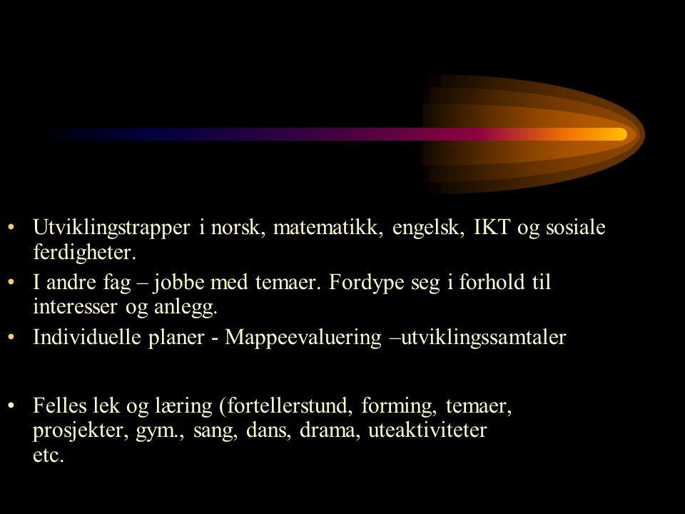 Utviklingstrapper i norsk, matematikk, engelsk, IKT og sosiale ferdigheter.