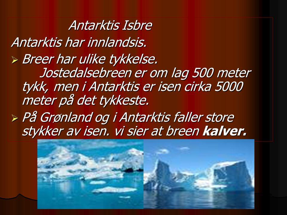 Antarktis har innlandsis.
