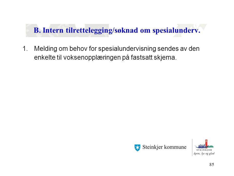 B. Intern tilrettelegging/søknad om spesialunderv.